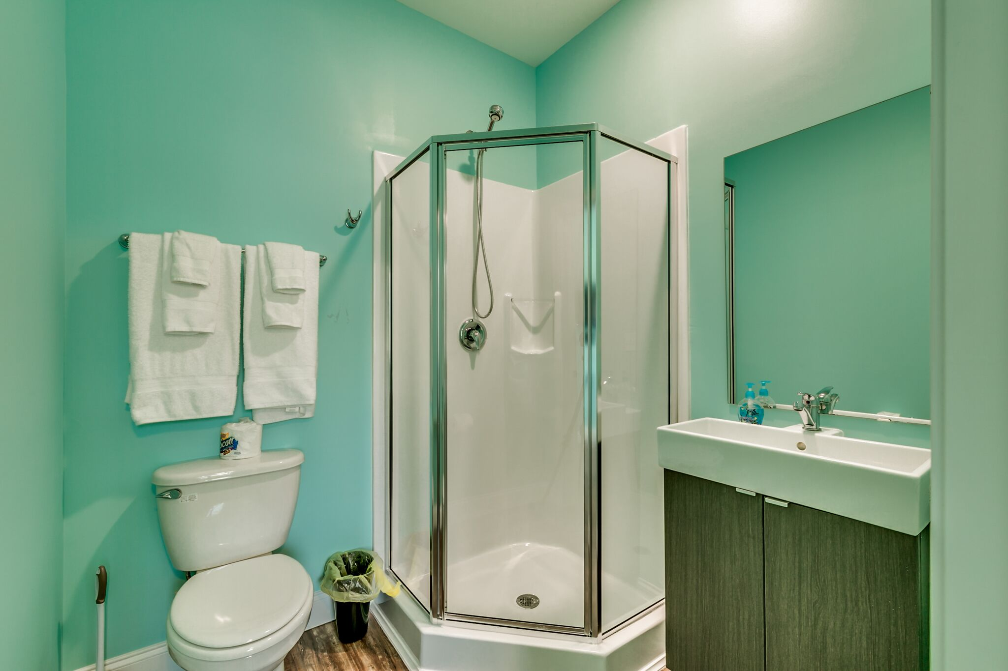 208 3rd Ave bathroom with shower.